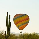 Hot Air Balloon In the Arizona Desert With Giant Saguaro Cactus by Bo Insogna