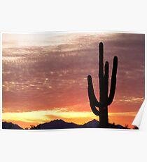 Arizona Saguaro Sunrise Poster