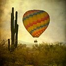 Hot Air Balloon Flight over the Desert by Bo Insogna