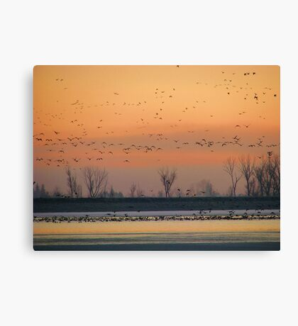 Early Winter Sunrise Canvas Print