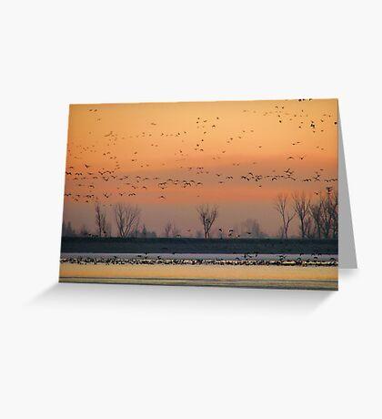Early Winter Sunrise Greeting Card