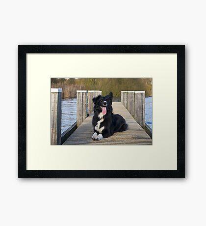 On the dock Framed Print