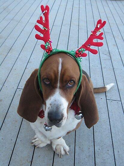 Shango Reindeer by nosajnybor