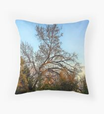 God Shed His Grace Throw Pillow