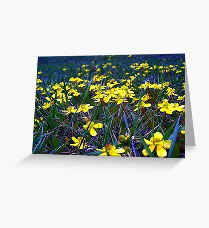 Spring at Last! Greeting Card