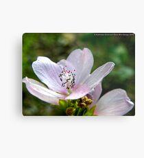 Tiny Pink Flower Metal Print