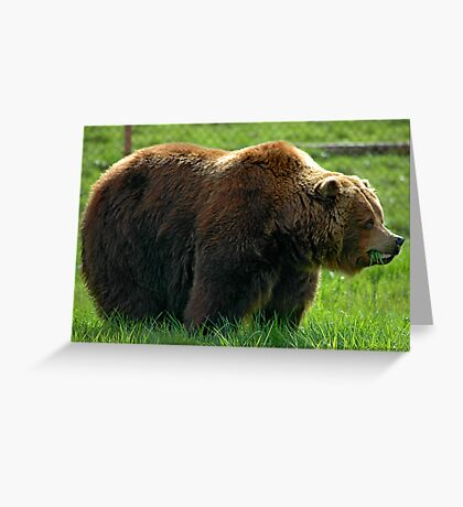 Big Hungry Guy Greeting Card