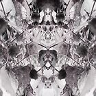 Visions of symmetry by crystalline