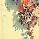 Grapes of Autumn von schwebewesen