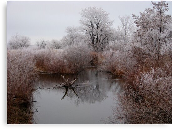 Closed for Winter by Brenda Dahl