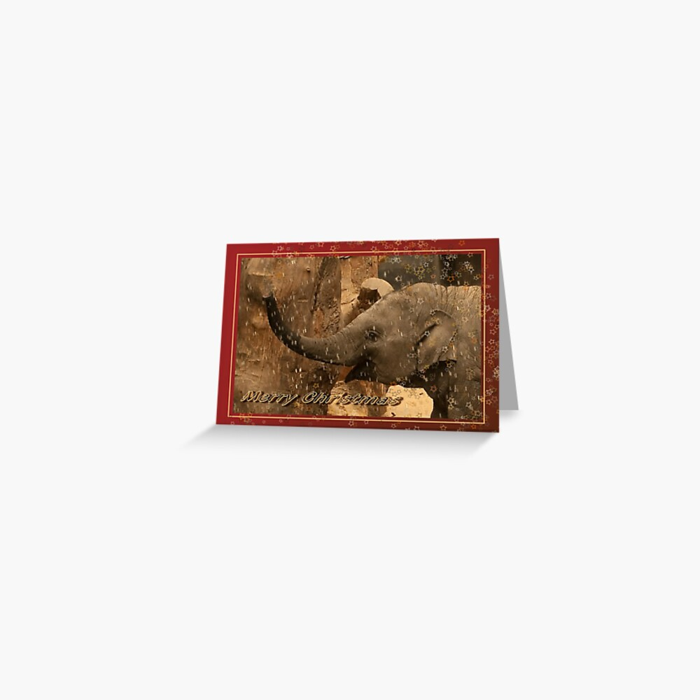 Little elephant stars - Merry Christmas Greeting Card