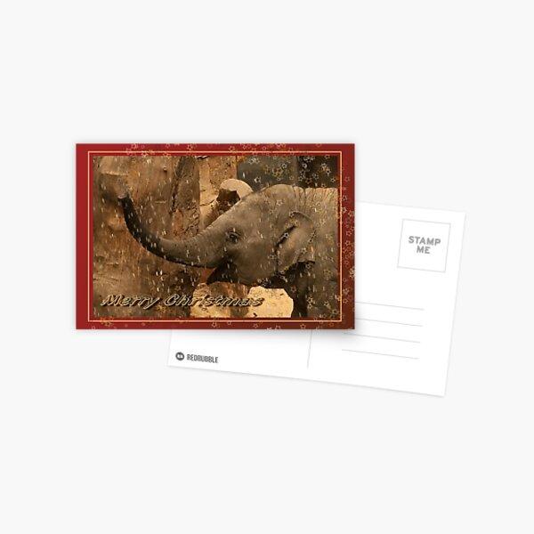 Little elephant stars - Merry Christmas Postcard