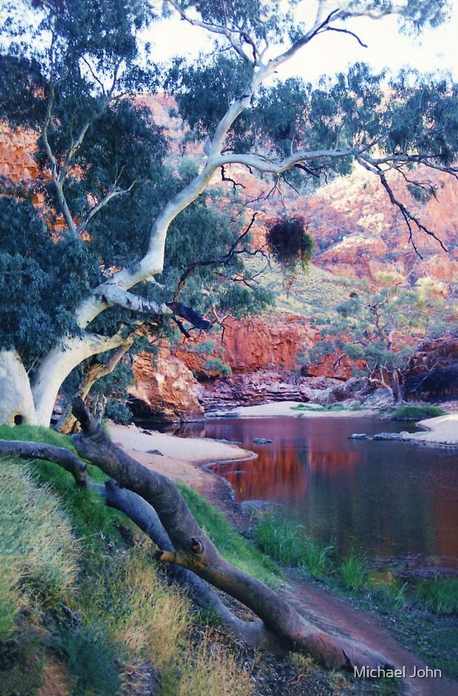 The Waterhole, Ormiston Gorge by Michael John