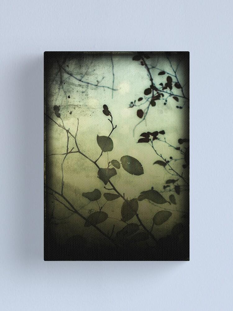 Alternate view of Through a Glass Darkly Canvas Print