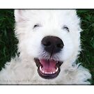 Happy Smile by Fiona Mouzakitis