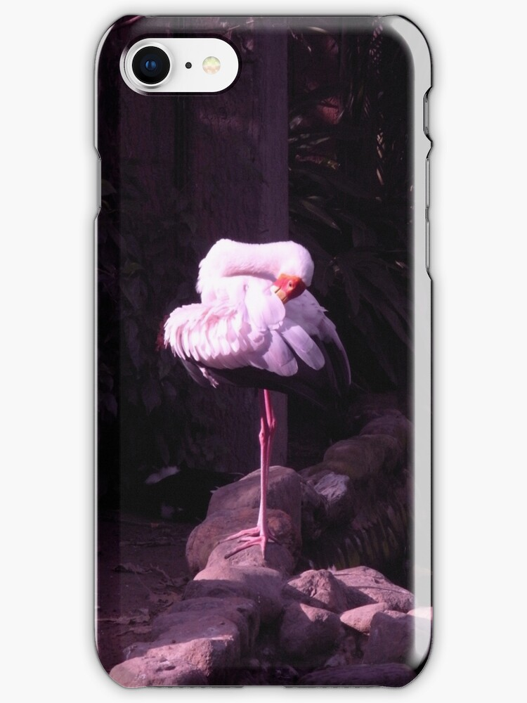 yoga white crane by yiching