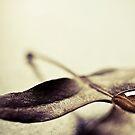 Leaf me alone by Ulla Jensen