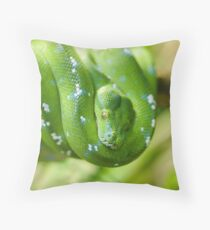Green tree python, Morelia viridis Throw Pillow