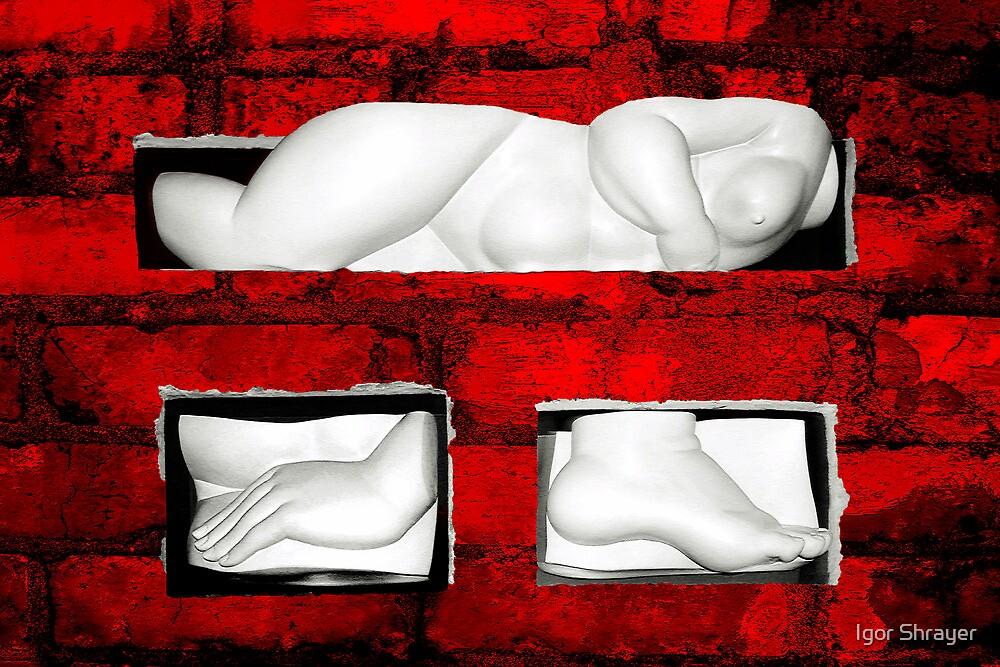 Set My Body Free 3 by Igor Shrayer