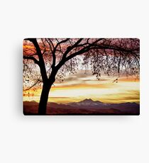 Colorful November Sunset Sky and Longs Peak Canvas Print