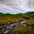 Langdale Valley Stream by John Hare