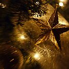 Christmas Star by Ania Ahlborn