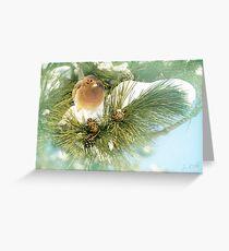 Snowy Perch Greeting Card