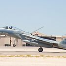 AF 78-0473 F-15C Eagle Landing by Henry Plumley