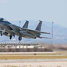 AF 78-0473 F-15C Eagle by Henry Plumley