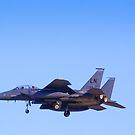 LN AF 98-134 F-15E Strike Eagle by Henry Plumley
