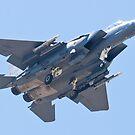 WA AF 90-0251, F-15E Strike Eagle by Henry Plumley