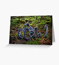 Purple Laccaria ~ Laccaria amethystine ~ Greeting Card