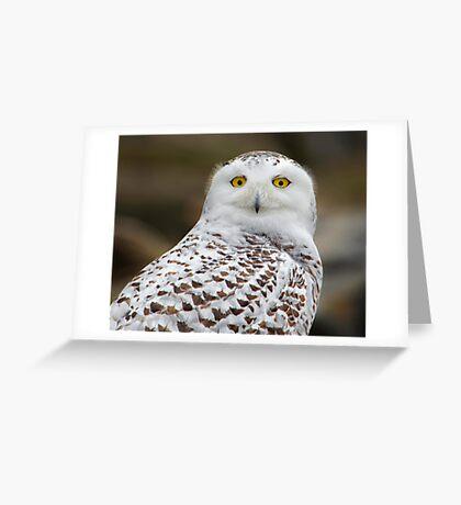Snowy portrait  Greeting Card