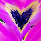 Floral Heart by EvaMarIza