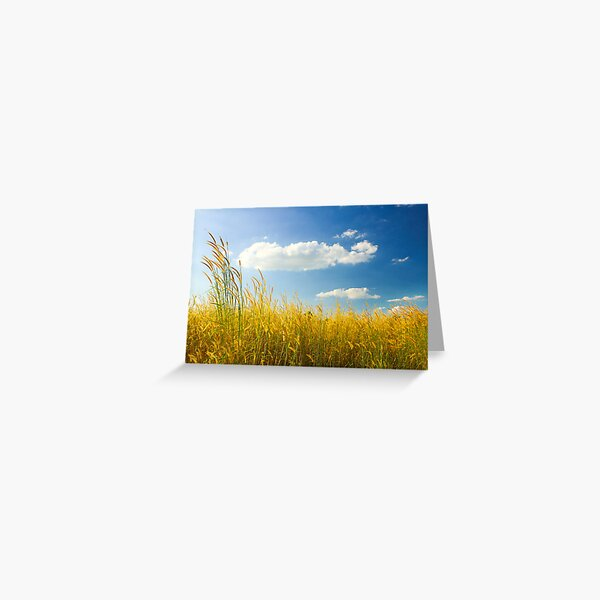 Unexpected - Landscape with Cattails and Cloud in Blue Sky Greeting Card