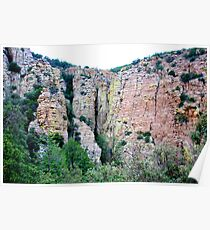 Ramsey Canyon Arizona Poster