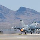 #OT AF 88 0420 F-16C Fighting Falcon by Henry Plumley