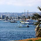 San Diego Bay by Norma  Ledesma