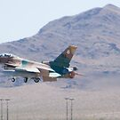 #WA AF 86 0272 F-16C Fighting Falcon by Henry Plumley