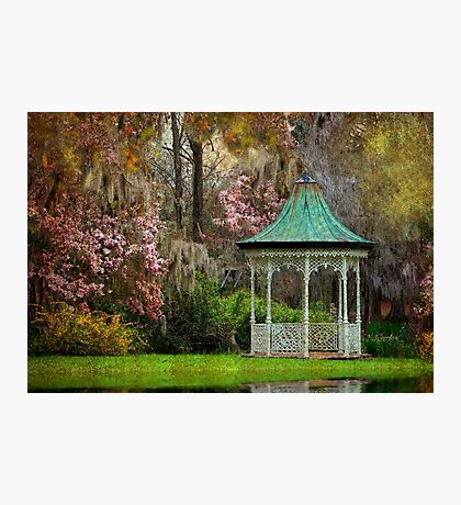 Spring Magnolia Garden At Magnolia Plantation Photographic Print