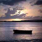 Taw Estuary by John Burtoft
