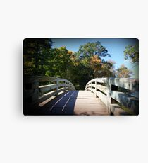 Pathway to... Canvas Print