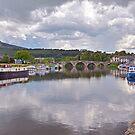 The River Barrow at Graiguenamanagh by Martina Fagan