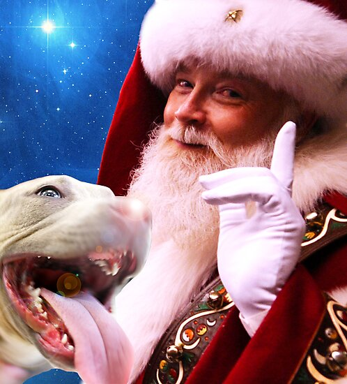 Rudolph, Santa's Red Nosed Pitbull by Beverlytazangel