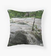 Torrent of Water Throw Pillow