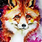 Red Fox by IsabelSalvador