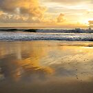 Good as Gold - Bribie Island by Barbara Burkhardt