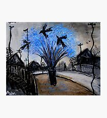 crows in the jacaranda Photographic Print
