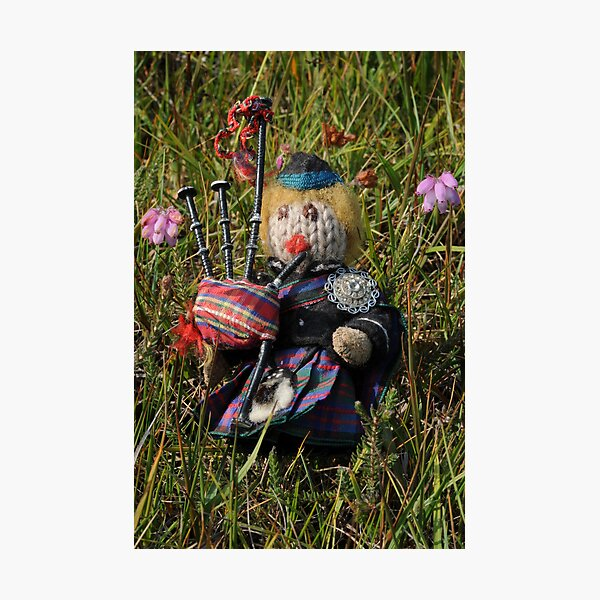Scotty plays the Pipes beside the Cross-leaved Heath Photographic Print