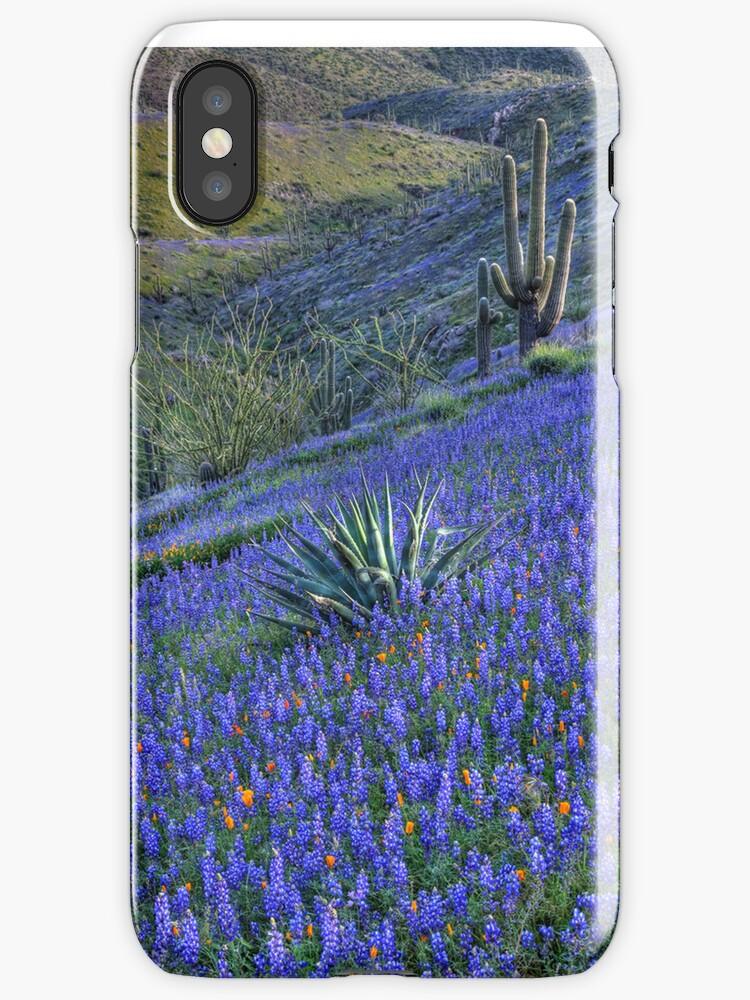 Desert Flowers by SOIL